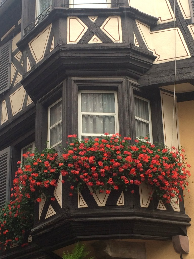 Colmar et ses maisons à colombage fleuries