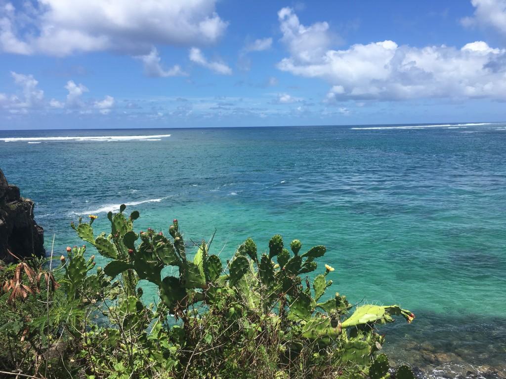 Sud de l'Ile Maurice